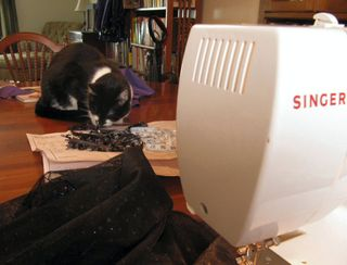 Sewing_cat
